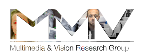 Multimedia and Vision Research Group